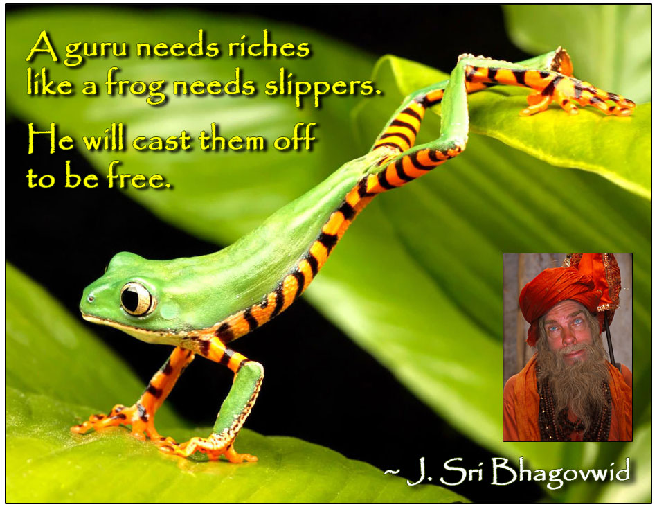 A-guru-needs-riches-like-a-frog-needs-slippers