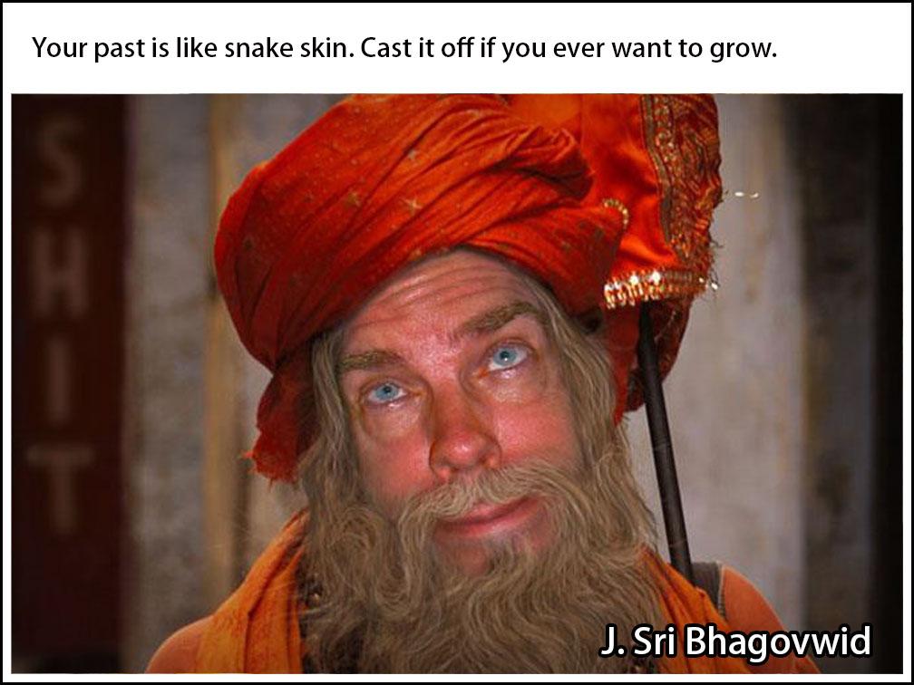 Bhagovwid