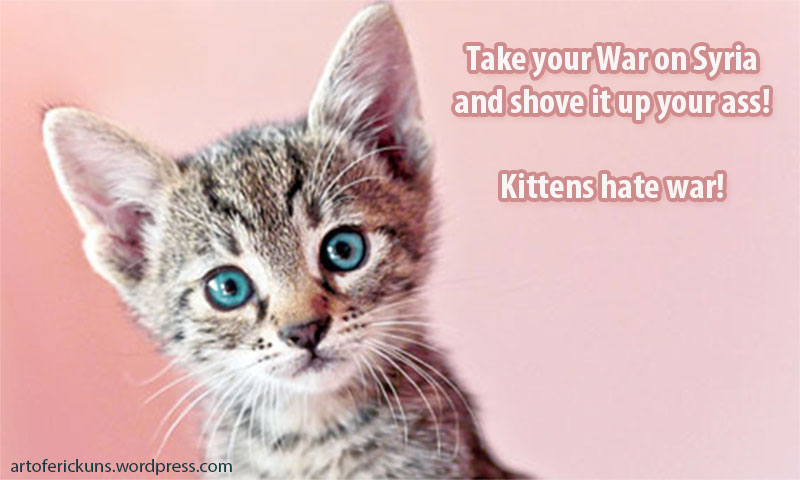 kittens-against-war