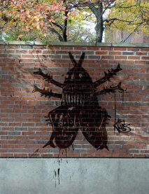 Fly on the wall 1
