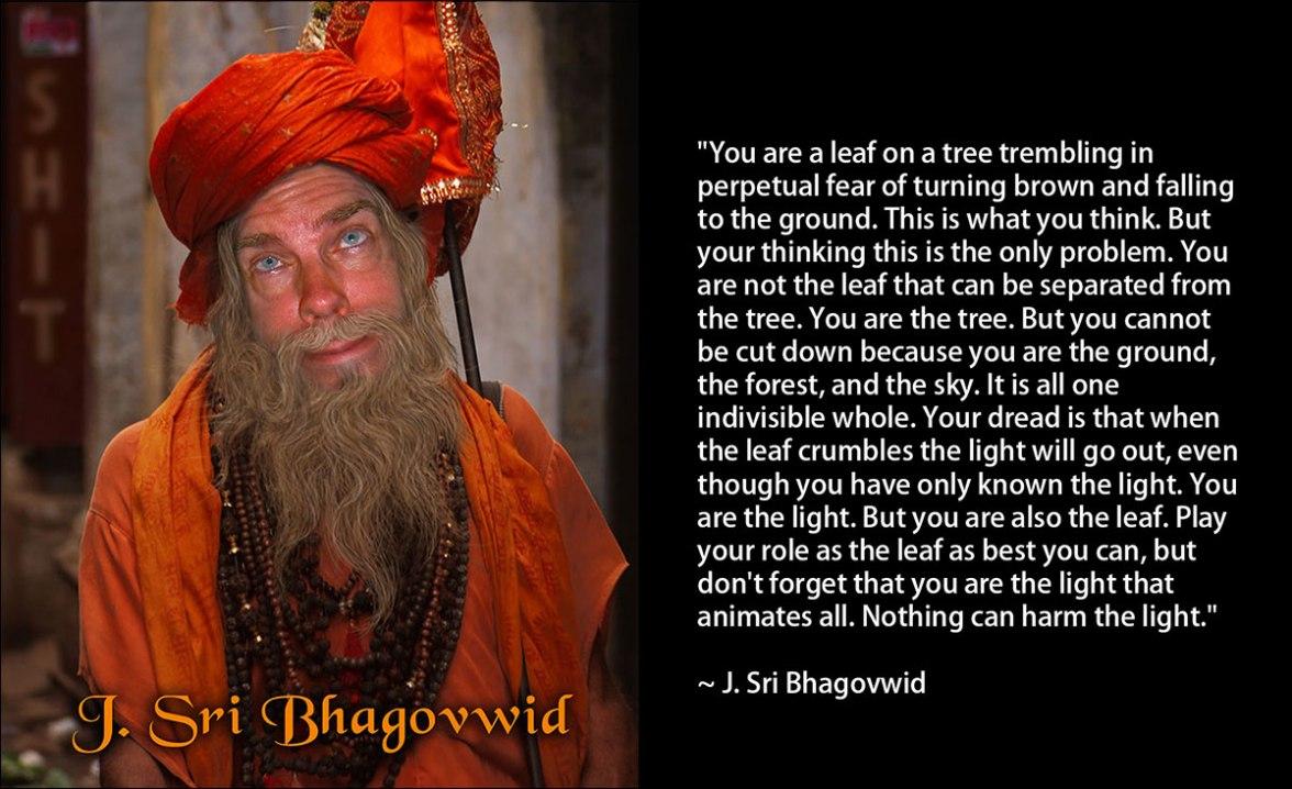 Sri-Bhagovwid-Quote