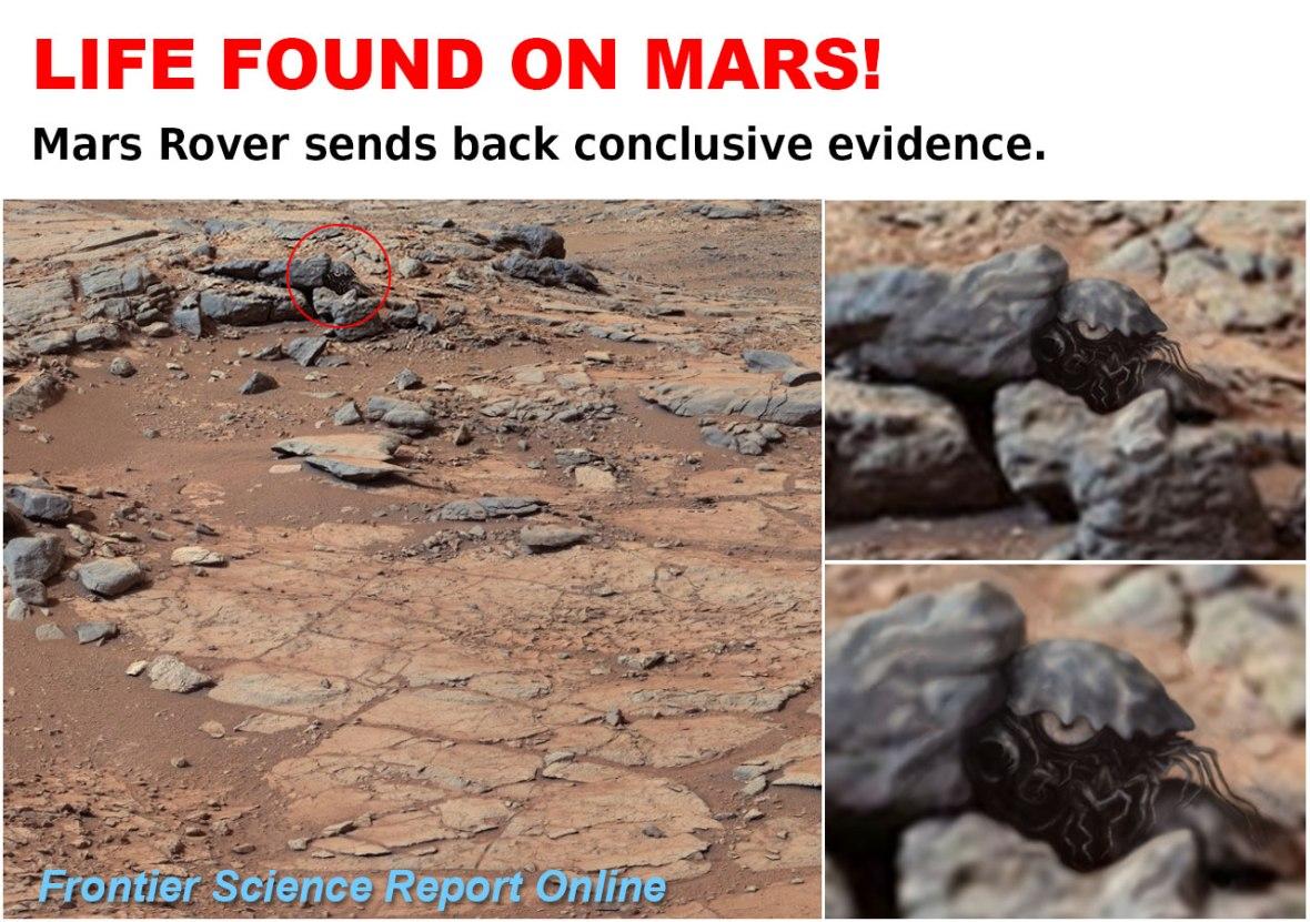 LIFE-ON-MARS. Mars Crab. Rover. Life on Mars