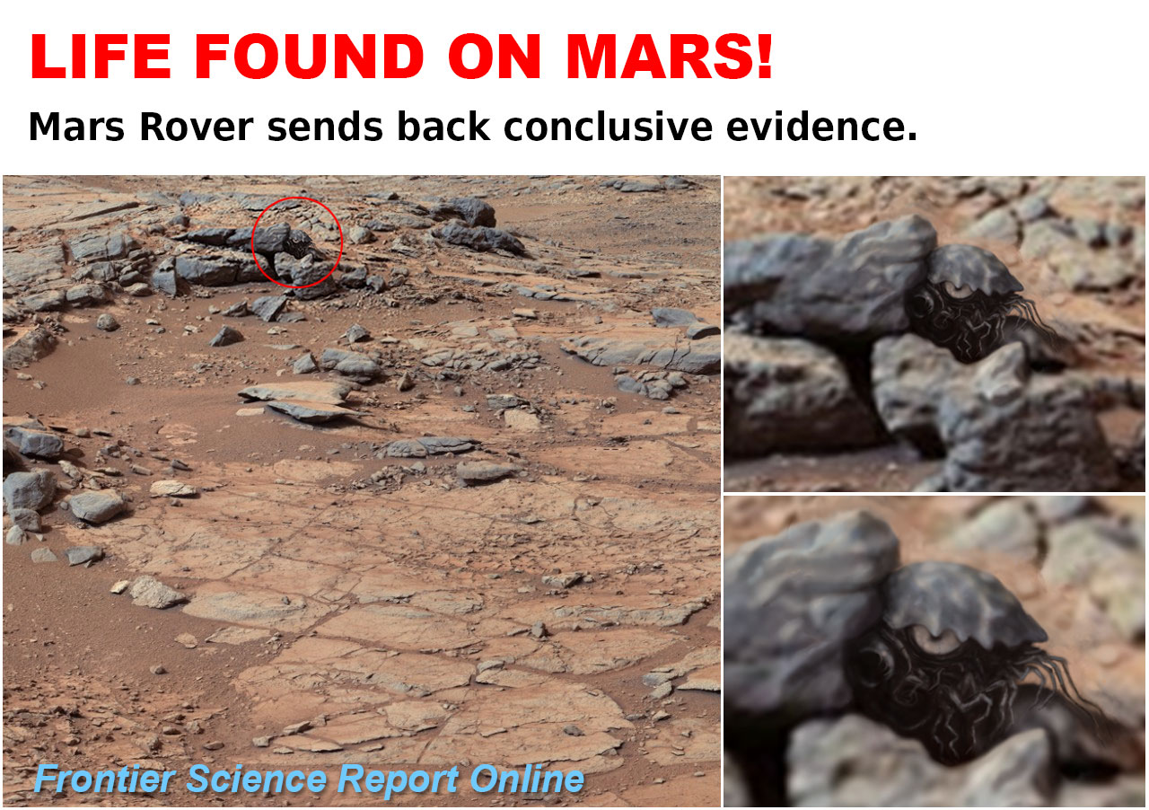 LIFE-ON-MARS. Mars Crab. Rover. Life on Mars