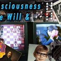 Consciousness, Free Will, and Art