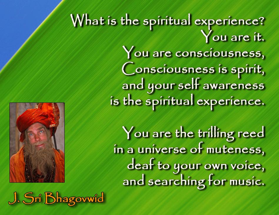 the-spiritual-experience