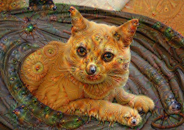 Google Deep Dream inceptionism cats dogs