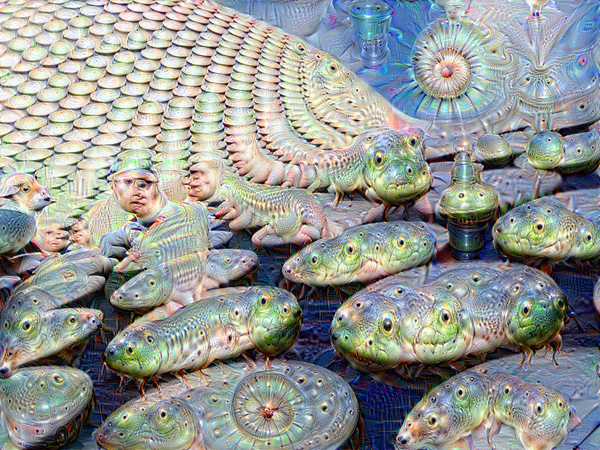 Google Deep Dream inceptionism frog fish snake rocks
