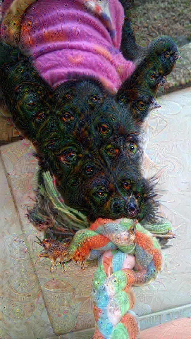 Google Deep Dream inceptionism dog caterpillars doghead
