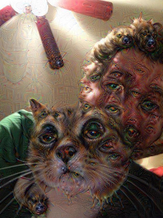 Google Deep Dream inceptionism mand and cat