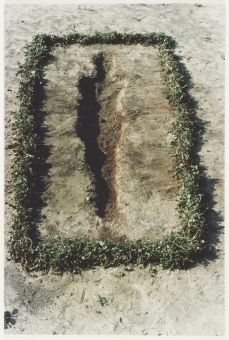 ana-mendieta-earth-work-3