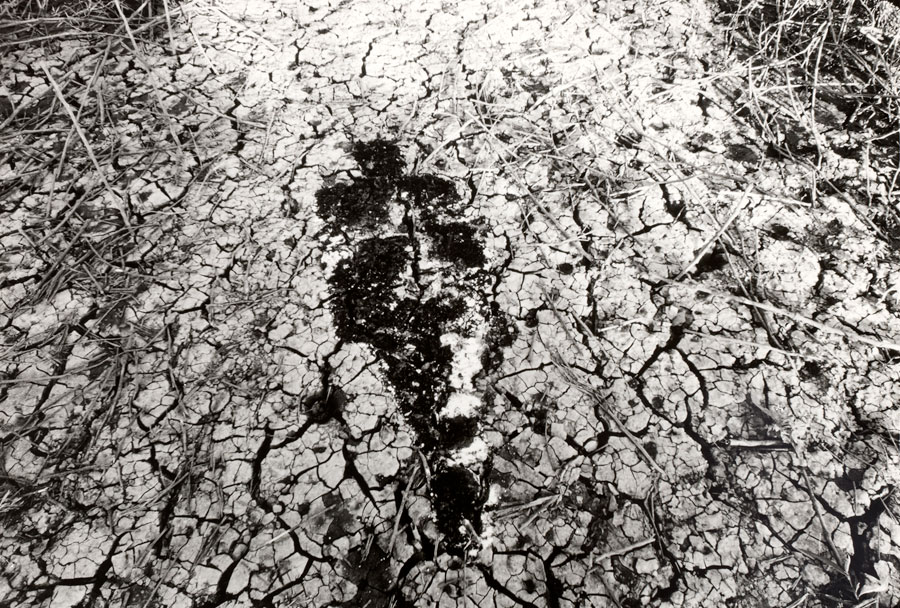 ana-mendieta-untitled-silueta-series-1978