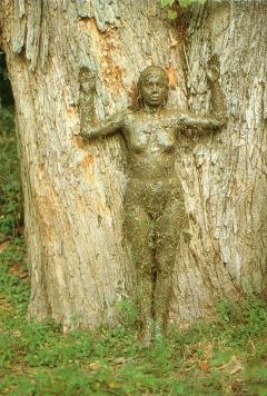 Tree-of-Life-2b4npe5