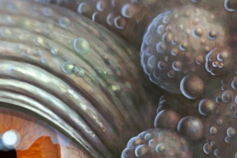 Detail-03